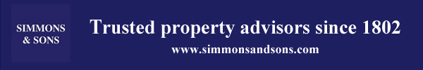 simmons-sons-banner-all-blue