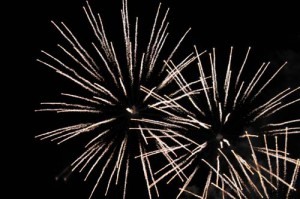 Sue Ryder Nettlebed Fireworks 2014