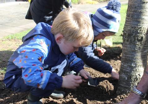 Henley Gardening Sprouts Club