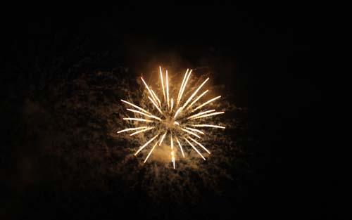 Sue Ryder Fireworks 2015
