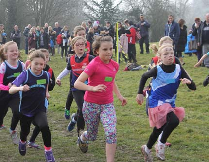 Henley Youth Festival Run