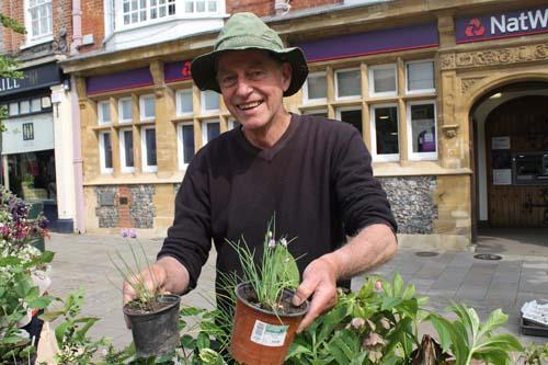 Henley Plant Sale