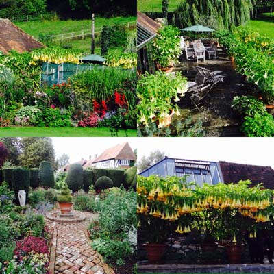 open-garden-bix