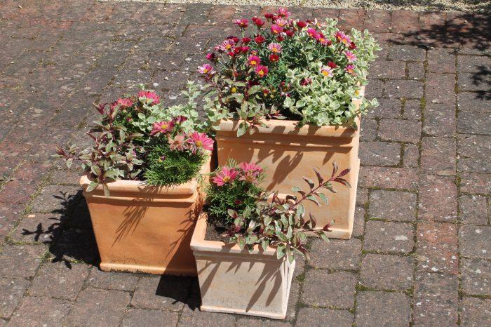 charming zen garden | Chelsea Fringe Invites You to Rake Their Charming Pop-Up ...
