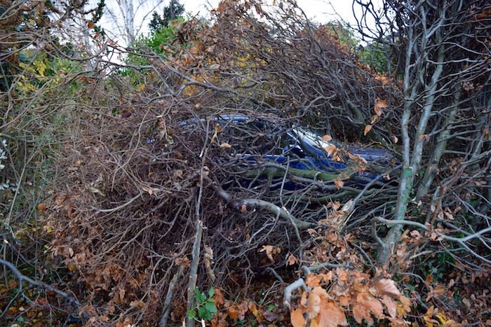 Car Crashes Through Hedge Into Front Garden On St Andrews Road