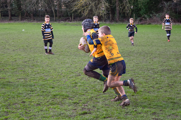 Henley Hawks Under 10s Host Juvignac France For Rugby Festival