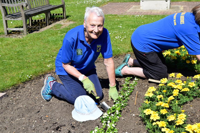 Henley In Bloom Gardening Buddies Plant Mill Meadows Celebration Beds For Forestry Commission Centenary