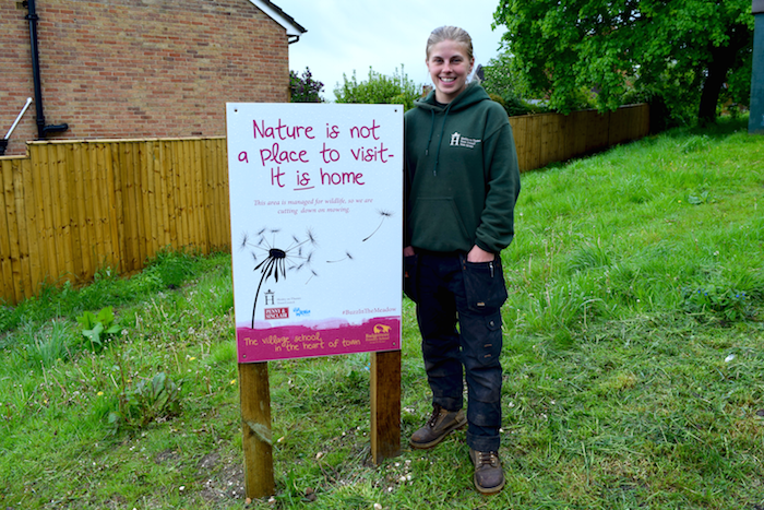Badgemore Primary School and Parks Services Team Wildflower Buzz In The Meadows